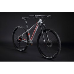 Bicicleta Silverback Sola...